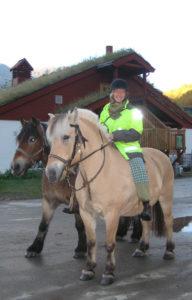 Hesteaktivitetane er over