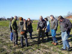 Gulrøter på Kalø sådd i oktober – og interesserte SJH-lærarar.