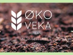 okoveka-aurland-banner-facebook