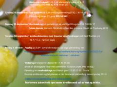 aurland-okouka2021-a3-poster-untitled-page-5-3